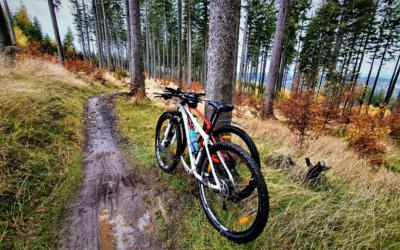 Jakie są typy rowerów? Jedno koło, trzy, a może cztery?