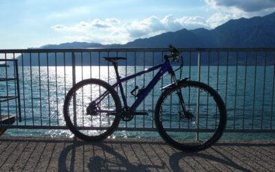 Dobry rower – czyli jaki?